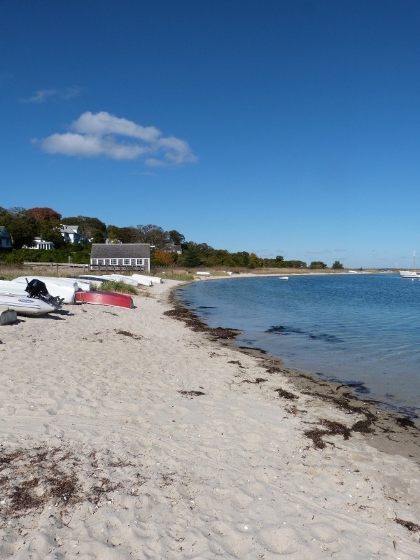 Beautiful beaches on Martha's Vineyard