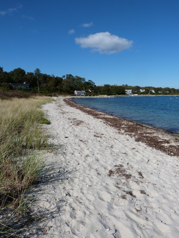Walking the beach of Vineyard Haven on Martha's Vineyard