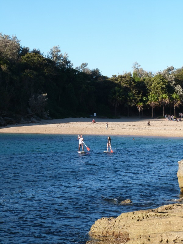 Add Snorkelling at Shelly Beach to your Sydney Bucketlist