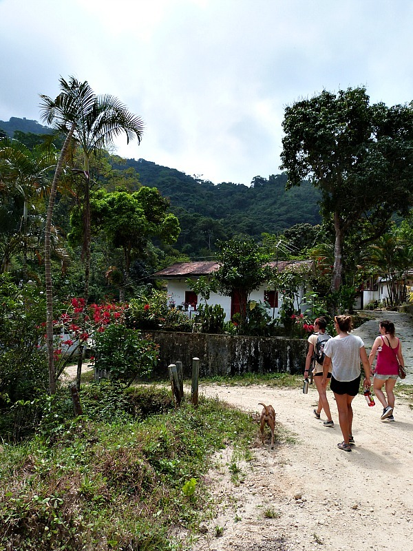 Hiking to coffee farms in Minca, Colombia - one of the best off the beaten path South America things to do