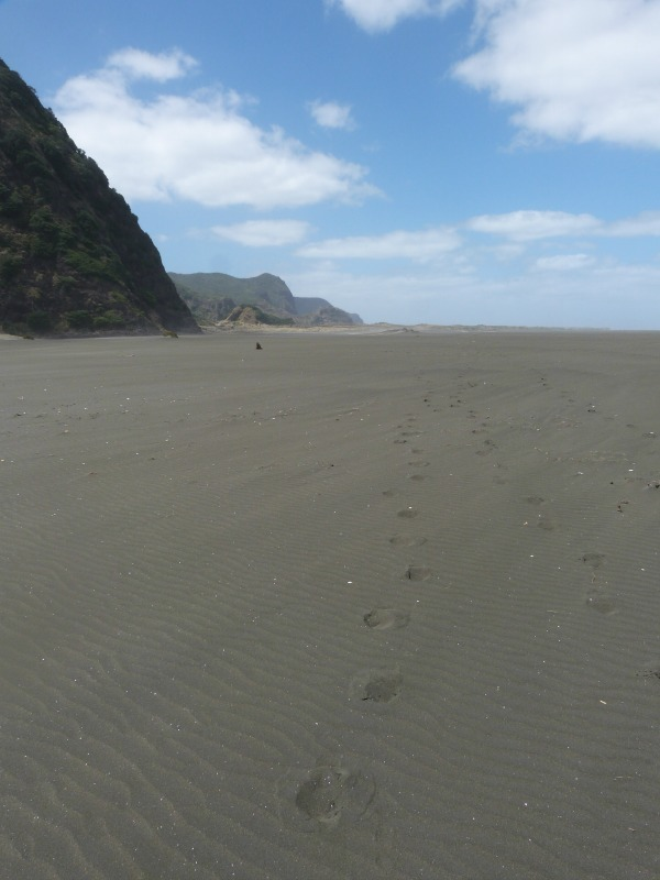 Hiking Karekare beach on the Hillary Trail in New Zealand
