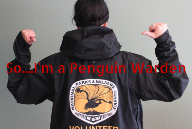 So....I'm a Penguin Warden