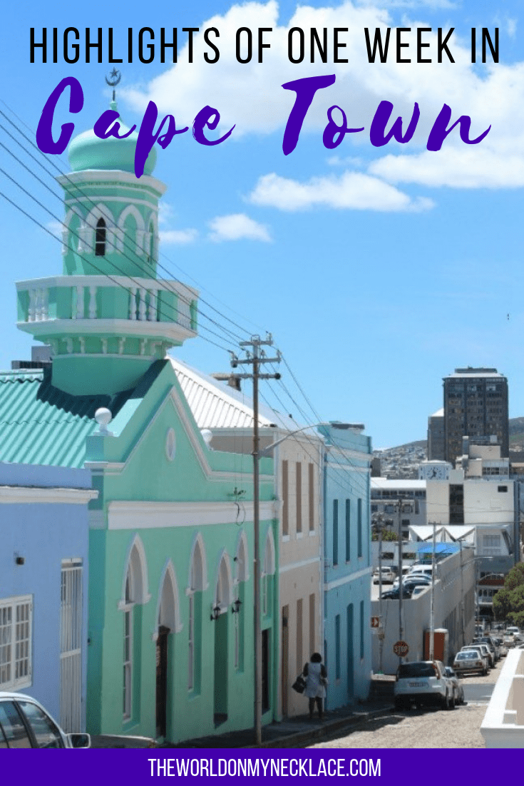 Highlights of One Week in Cape Town, South Africa