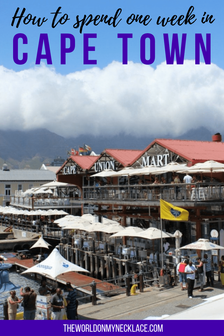 How to Spend 1 Week in Cape Town