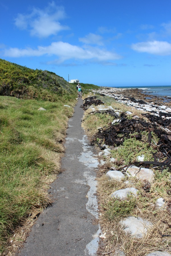 Walking trail in Kommetjie on the Cape Peninsula in South Africa