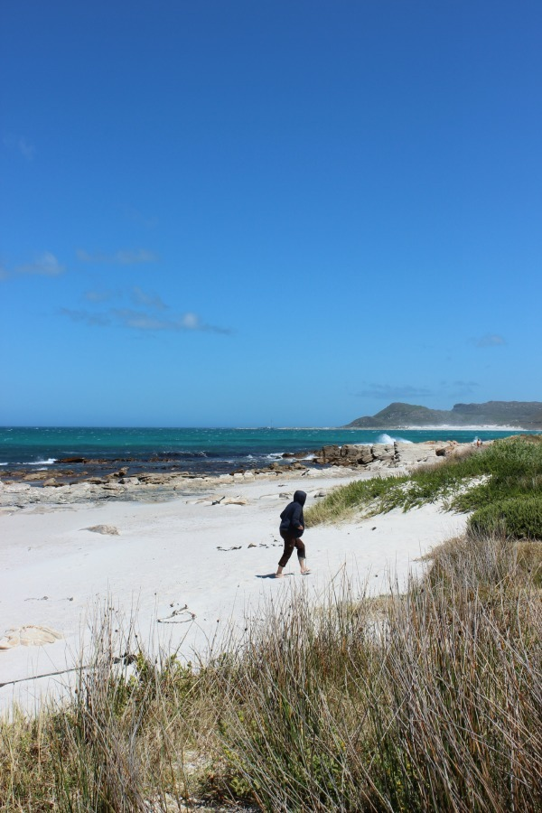 Exploring the amazing beaches of the Cape Peninsula in South Africa