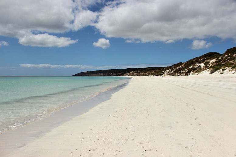 Emu Bay beach on Kangaroo Island - part of any great Kangaroo Island Itinerary