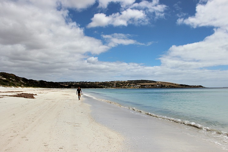 Emu Bay on Kangaroo Island - my favorite Kangaroo Island beach