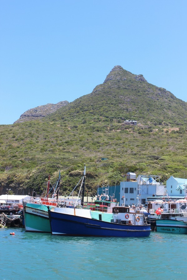 Hout Bay Fishing Fleet in Cape Town, South Africa