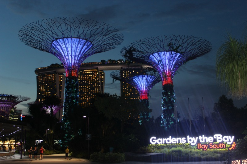 Supertrees in Gardens by the Bay in Singapore