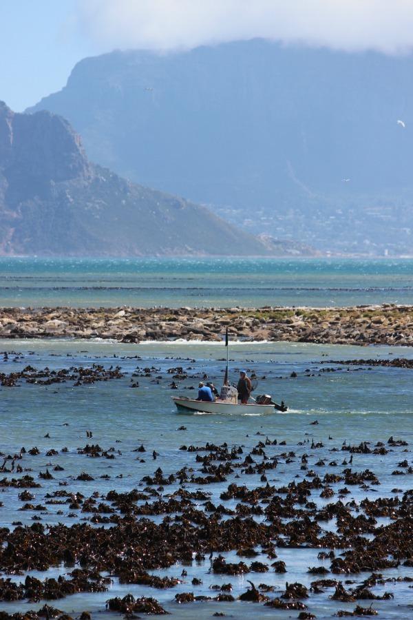 Kommetjie Harbour in Cape Town, South Africa