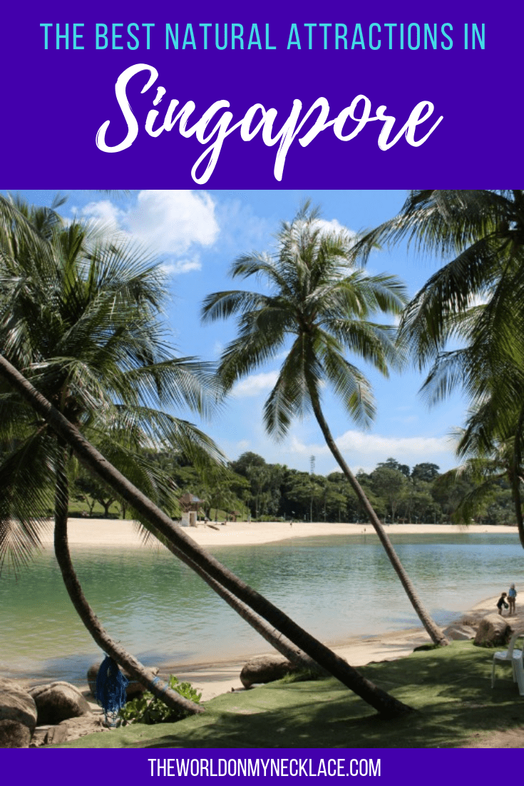 The Best Natural Attractions in Singapore | The World on my Necklace