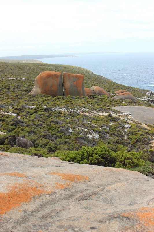 The view from Remarkable Rocks on Kangaroo Island