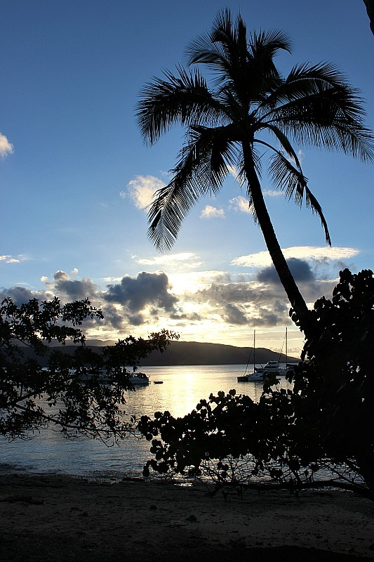 Evening on Fitzroy Island