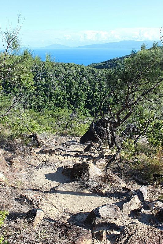 Fitzroy Island Summit hike