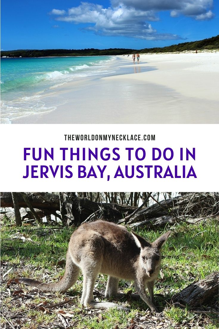 Fun Things To Do in Jervis Bay Australia