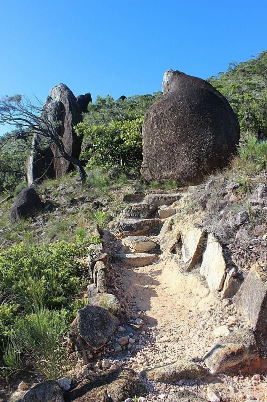 Hike to Summit on Fitzroy Island