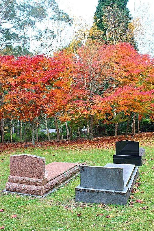 Mount Wilson cemetery