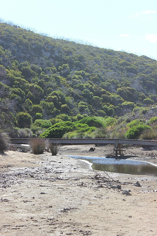 Ravine des Casoars dry riverbed on Kangaroo Island