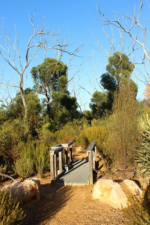 Ravine des Casoars - one of the best Kangaroo Island walking trails