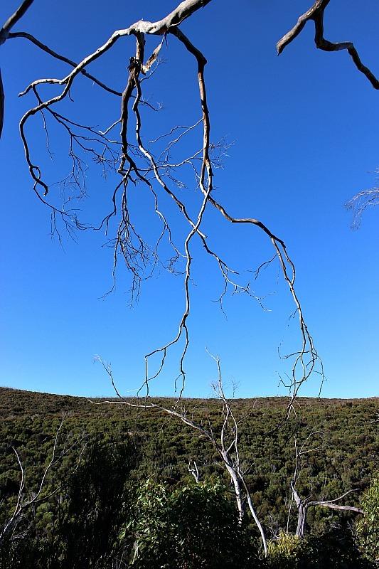 Ravine des Casoars Kangaroo Island trail