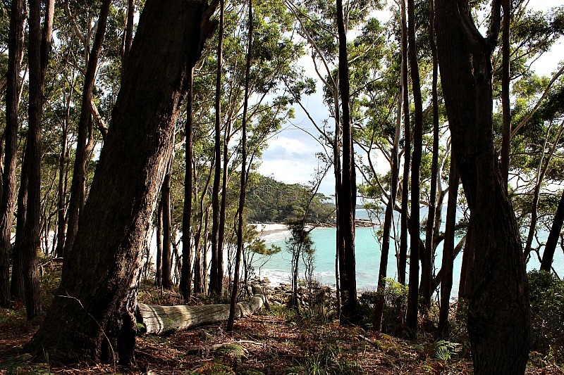Walking the White Sands trail is one of the best things to do in Jervis Bay