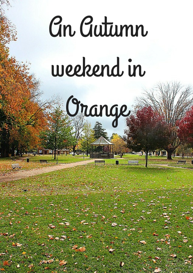 An Autumn weekend in Orange