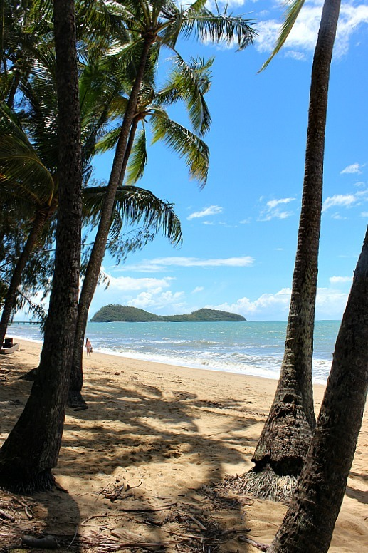 Beach at Palm Cove in Northern Queensland