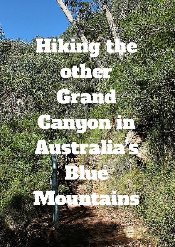 Hiking the other Grand Canyon in Australias Blue Mountains