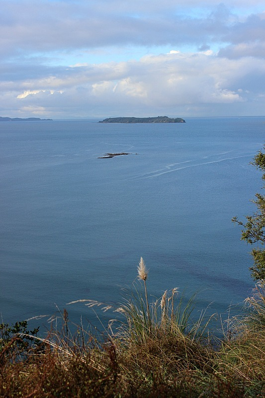 Clifftop views at Wenderholm Regional Park in North Auckland