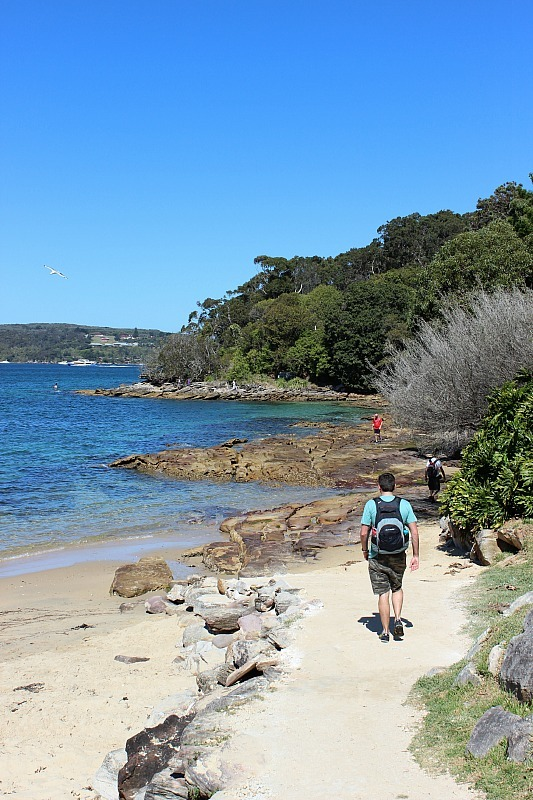 Forty Baskets beach on Manly to Spit Bridge Hike