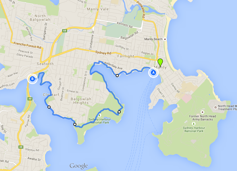Manly to Spit Bridge, one of the best Sydney Walks