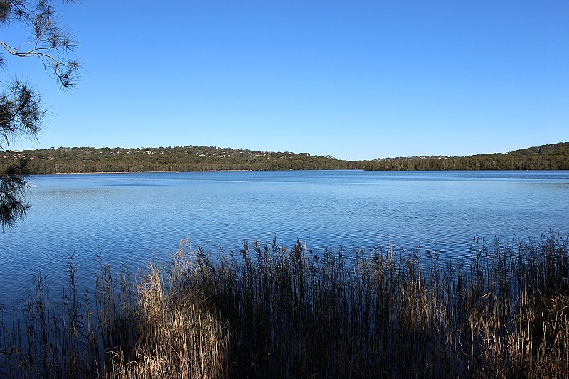 Narrabeen Lake Loop trail in Sydney