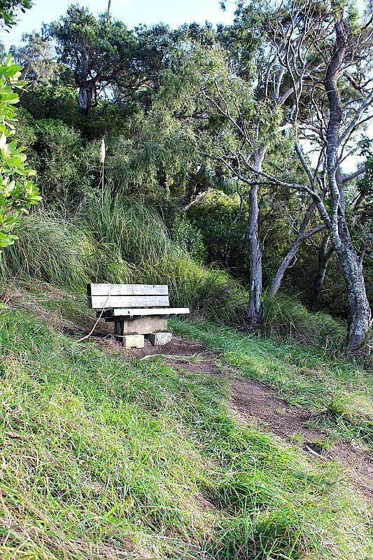 Seating at Wenderholm Regional Park in North Auckland