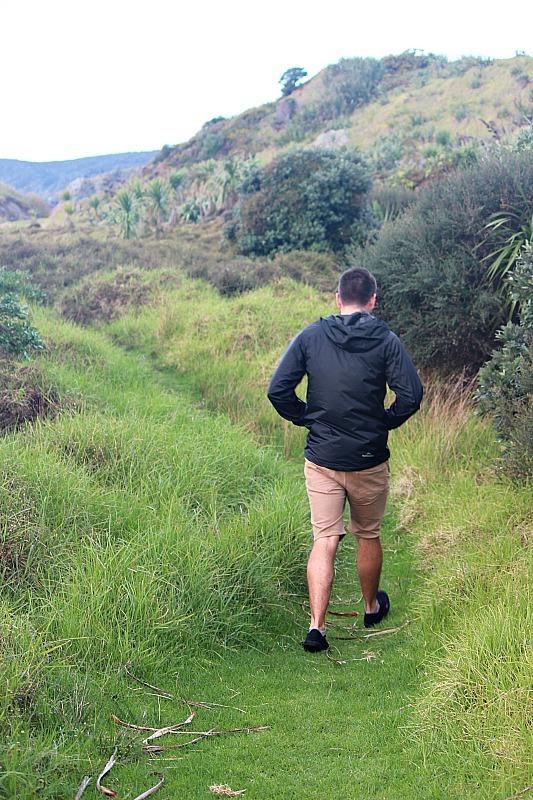 Tawharanui hiking