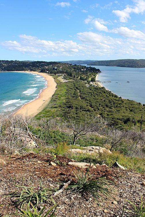 View from Barrenjoey Lighthouse at Palm Beach