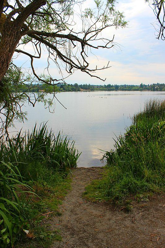 Beautiful Green Lake in Seattle