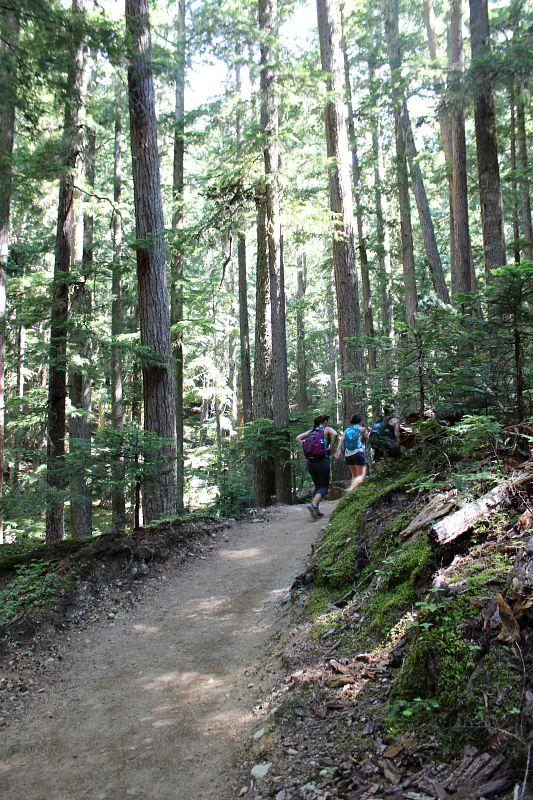Beginning of Garibaldi Lake Hike