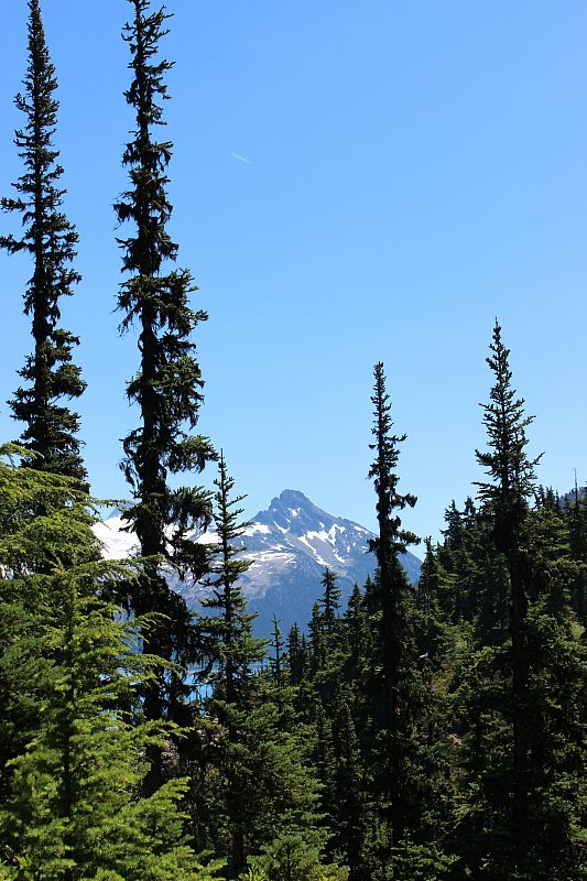 Black Tusk in the distance from the Garibaldi Lake trail