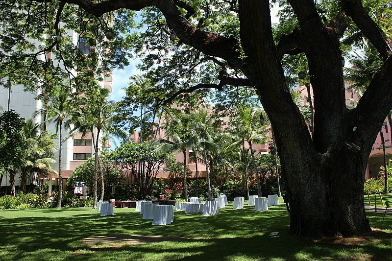 Royal Hawaiian Hotel grounds in Waikiki