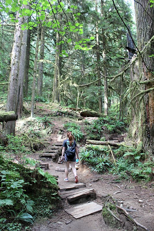 Hiking in Lynn Canyon during summer in Vancouver