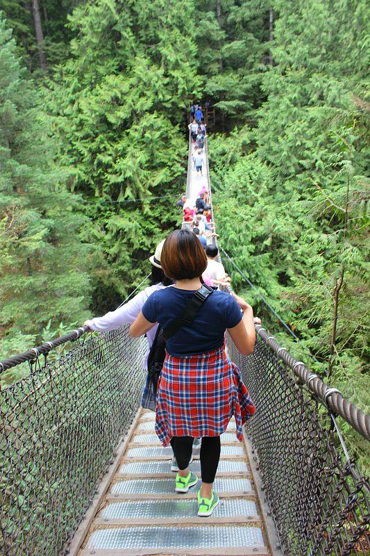 Visit Lynn Canyon in Vancouver