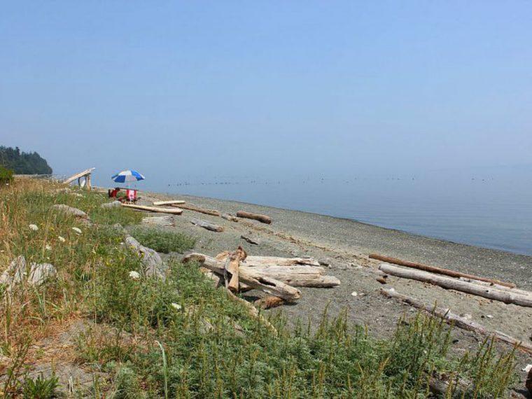 Summer on Denman Island