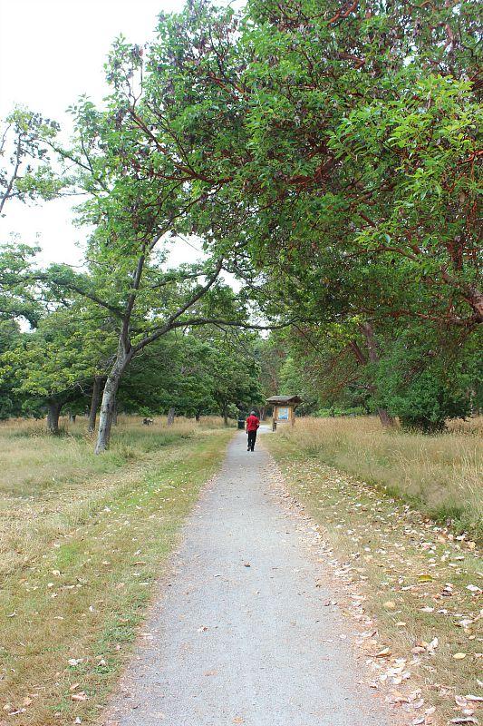 Beacon Hill Park in Victoria, Canada