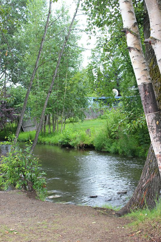 Chester Creek in Anchorage