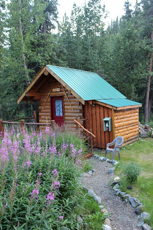 Cabin at Denali Mountain Morning Hostel