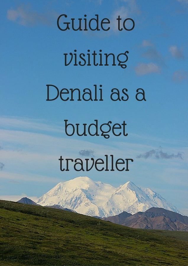 Guide to visiting Denali as a budget traveller