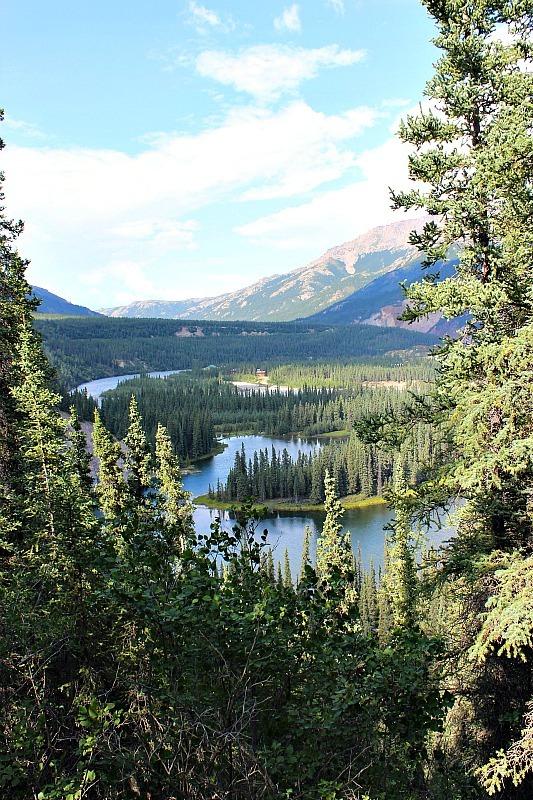 Lost Lake hike in Denali National Park