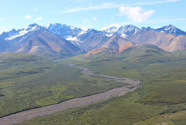 River valley in Denali National Park