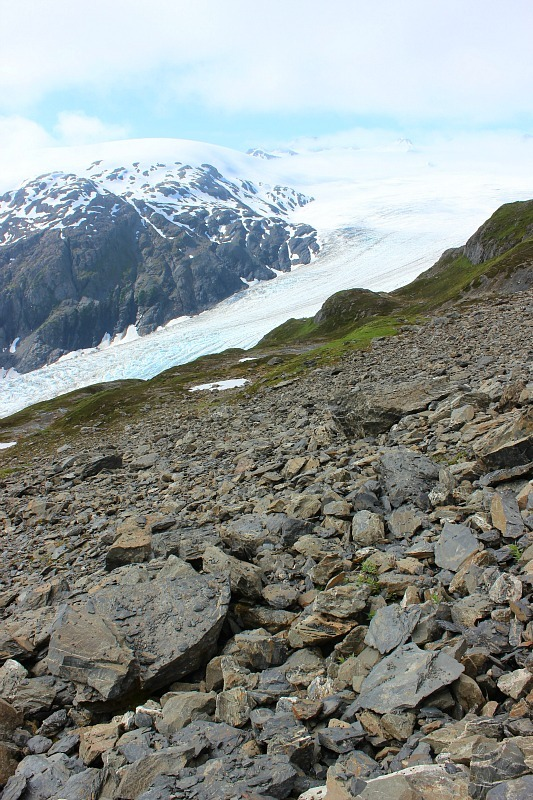 Rock field along the Harding Icefield trail in Alaska
